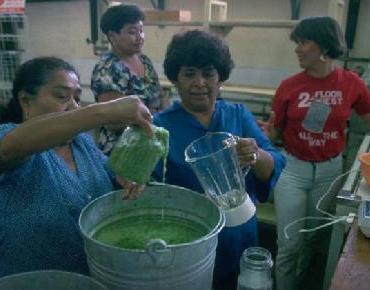 Una farmacia viviente para impulsar el desarrollo en Zacatecas