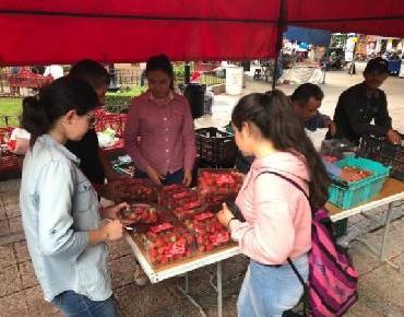 Exhiben en Festival del Chongo productos de la región