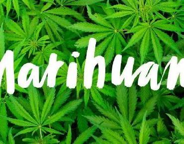 Se aprueba el uso lúdico de la Marihuana