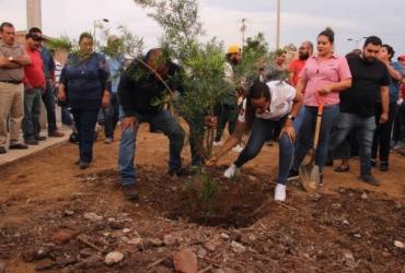 Celebran en Zamora Día Internacional del Árbol con creación de parque lineal